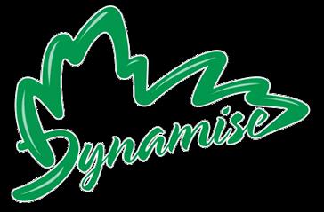 https://dynamise.ca/